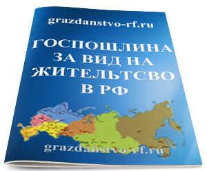 Госпошлина на вид на жительство в РФ