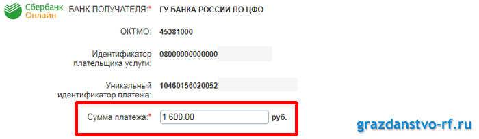 Как оплатить госпошлину за РВП онлайн