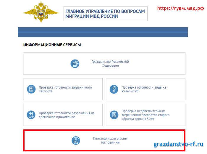Оформление гражданства ребенку рожденному в россии