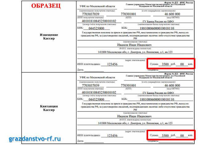 Сумма госпошлина на гражданство РФ